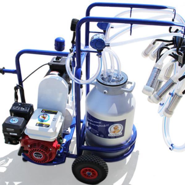 ДОЮШКА Универсал 2АС c бензиновым двигателем - ФермерМ - Товары для фермеров и хозяйств