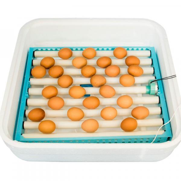 """Инкубатор для яиц автоматический """"Птичий двор"""" А-64 (А-54) - ФермерМ - Товары для фермеров и хозяйств"""